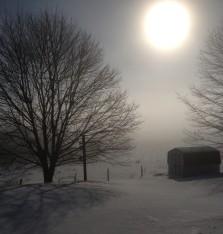 Sackville in the snow-fog