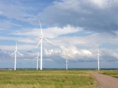 Tantramar windmills